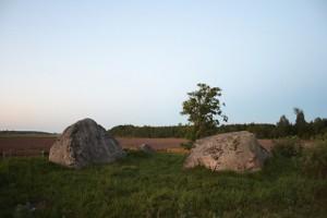 Камни ледникового периода в д. Каменое